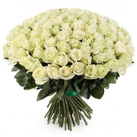 101 роза белая (40см)