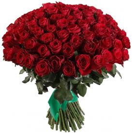101 роза красная (40см)