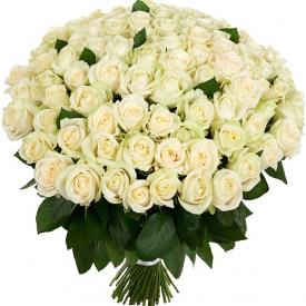101 розa белая (60см)