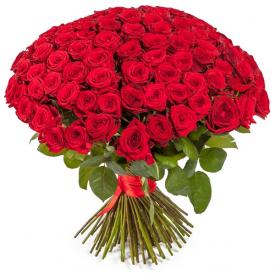 101 розa красная
