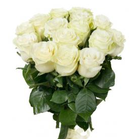 15 роз белые