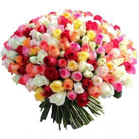 201 роза MIX (40см)