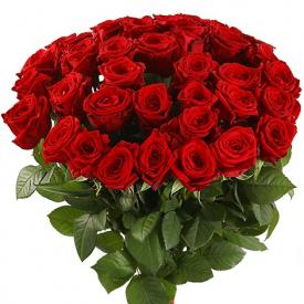 35 роз красные