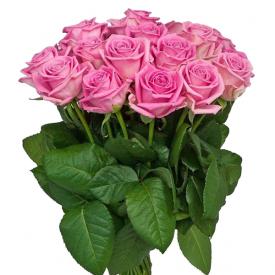 15 роз розовые (60см)