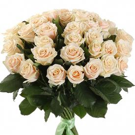 35 роз кремовые
