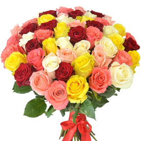 51 роза MIX (60см)