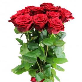 11 роз красные