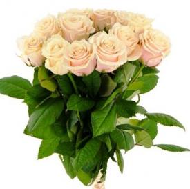 11 роз кремовые (60см)