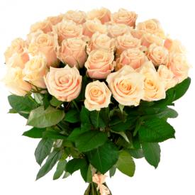 25 роз кремовые (60см)