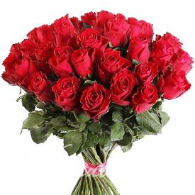 51 роза красная (40см)