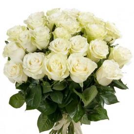 25 роз белые