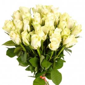 25 роз белые (40см)