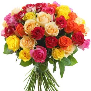 51 роза MIX (40см)